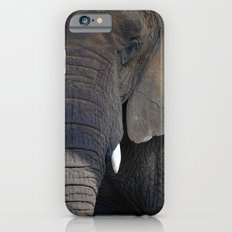 Elephant Portrait Slim Case iPhone 6s