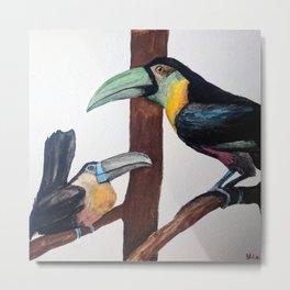 Two Grumpy Toucans Watercolour Metal Print