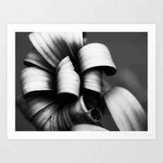 Desaturated Daisies Art Print