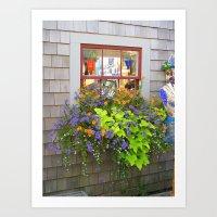 Nantucket Window box Art Print