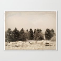 The gathering ~ Winter trees Canvas Print