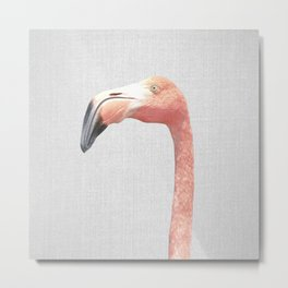 Flamingo - Colorful Metal Print