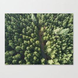 Green forest from above Canvas Print