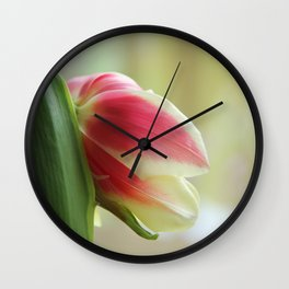 Tired Tulip II Wall Clock