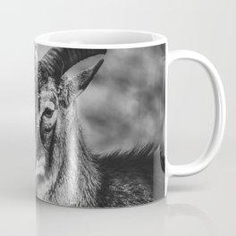 Mouflon Sheep. Black and White Photograph Coffee Mug