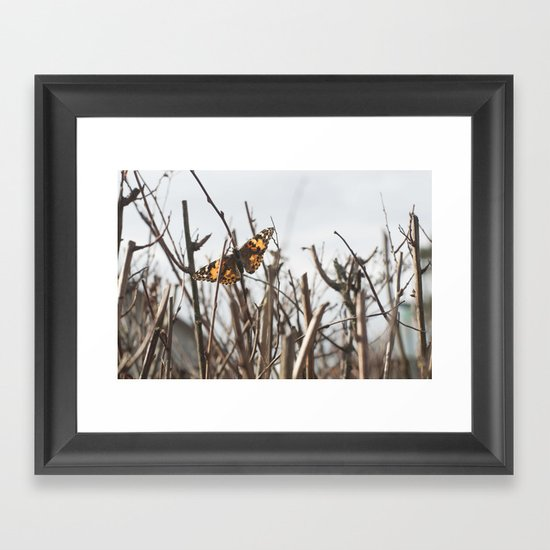 painted lady Framed Art Print