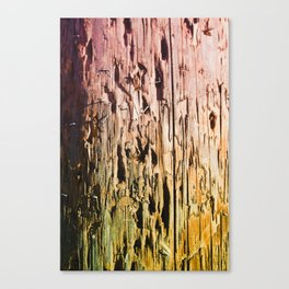 Colored Trunk Canvas Print