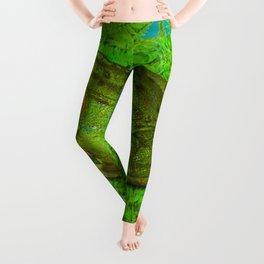 GREEN SWAMP FROG & GREEN FERNS Leggings