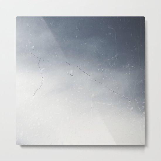 Winged Migration Metal Print