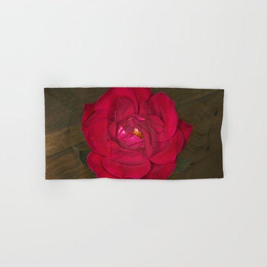 Red Rose in bloom Hand & Bath Towel