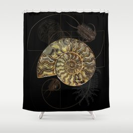 Ammonite Trilobite Fibonacci Spiral Shower Curtain