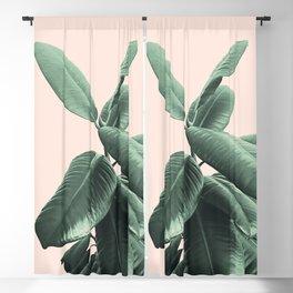 Ficus Elastica #25 #SummerVibes #foliage #decor #art #society6 Blackout Curtain