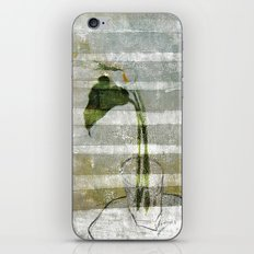 the arum iPhone & iPod Skin