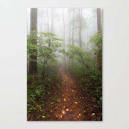 Adventure Ahead - Foggy Forest Digital Nature Photography Canvas Print
