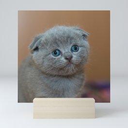 Cat_20180102_by_JAMFoto Mini Art Print