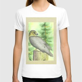 Merlin Falcon T-shirt