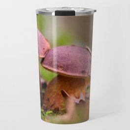 Porcini mushrooms in a double pack Travel Mug