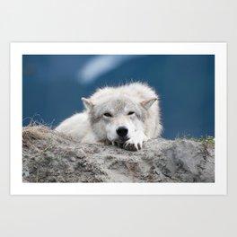 Sleepy Wolf Art Print