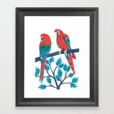 Red Parrots Framed Art Print