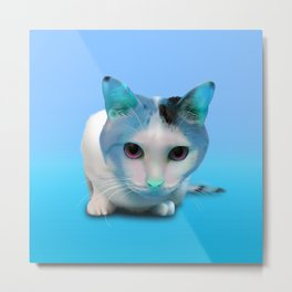 Cool Blue Felix Metal Print