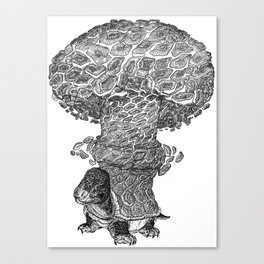 Atomic Turtle Canvas Print