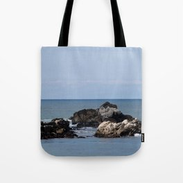The Whaler's Cove (Point Lobos) Tote Bag