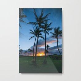 Beautiful Sunset Palm Trees Metal Print