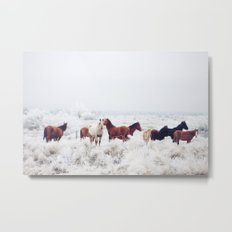 Winter Horseland Metal Print