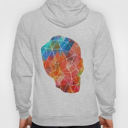 Skull Made of Color Hoody