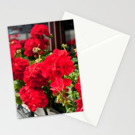 Bunches of vibrant red Pelargonium Stationery Cards
