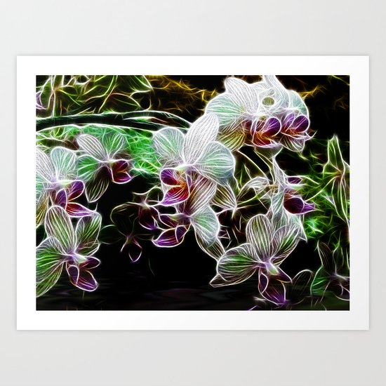 Orchids in Reflection Art Print