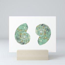 Marbled Chambers of the Nautilus Mini Art Print