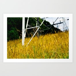 Orange Pylon Grass Art Print