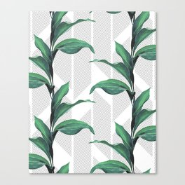 Greenhouse -jungle Canvas Print