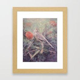 Red Wattle bird Framed Art Print