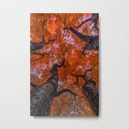 Nishinomiya Japanese Garden - Autumn Trees Metal Print