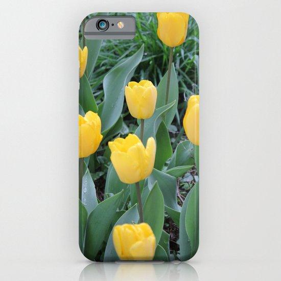 Appledorn Tulips iPhone & iPod Case