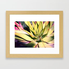 Cactus in neon colour pop photograhy no.9 Framed Art Print