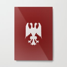 Aerugo Flag Metal Print
