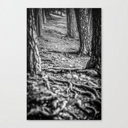 Rootway 2012 - black edition Canvas Print