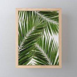 Palm Leaf III Framed Mini Art Print