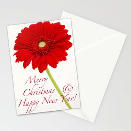 Merry Christmas and Happy New Year | Gerbera Daisy Stationery Cards