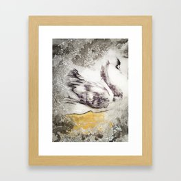 The Swan's Distraction Framed Art Print