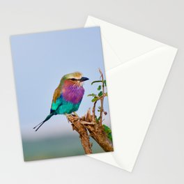 wildlife in Kenya #society6 #decor #buyart Stationery Cards