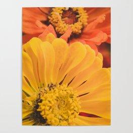 Floral 17 Poster