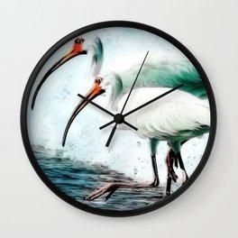 Ibis Splash Wall Clock
