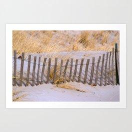 Scenic Beach Fence Art Print