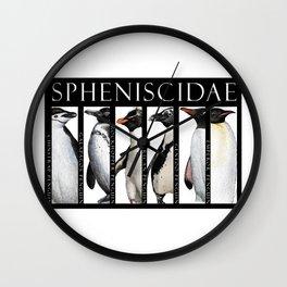 Spheniscidae - Penguins Wall Clock