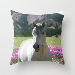 stallion of the front range Throw Pillow