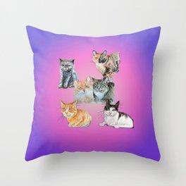 Rasmuss and friends Throw Pillow